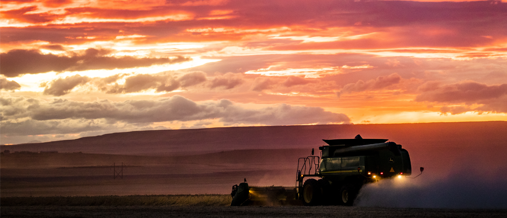 Image of a combine in a field at sunset