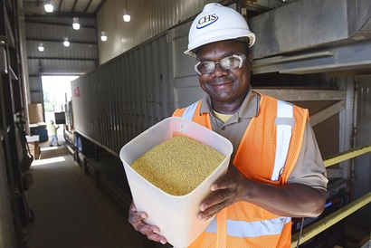 Kwami Gati holding a bucket of DDGS at CHS ethanol facility