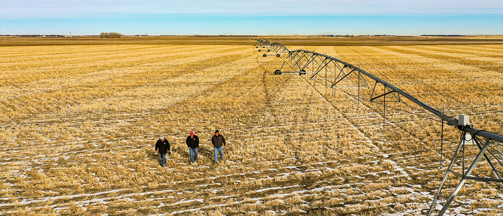Men walking in field next to irrigation equipment