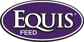 Equis Feed
