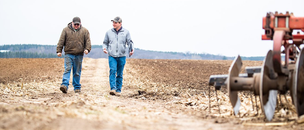 Two farmers walking down a dirt road in early spring.