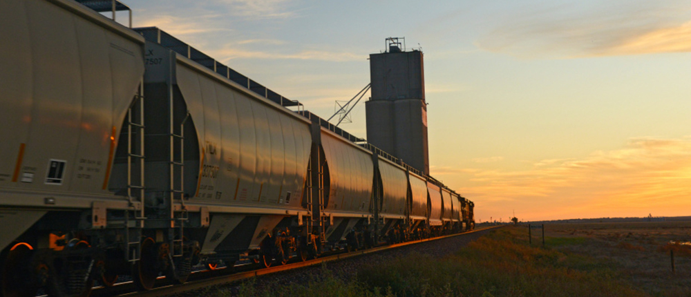 Grain marketing, 1000x430, train, transportation, CHS transportation, sunset, Transporting goods, rail, rail cars, elevator, Perspective, sky, traveling, shipping and receiving, shipping, traveling,