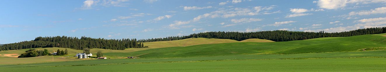 Farm and ranch insurance , field , mountain , trees , sky , clouds , bin , storage , silo , landscape , Farm-Ranch-1322x249