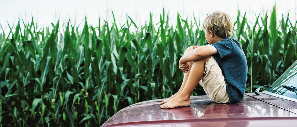 car , hood , kid , children , next generation , crop , agriculture , future leaders , corn , field , sitting