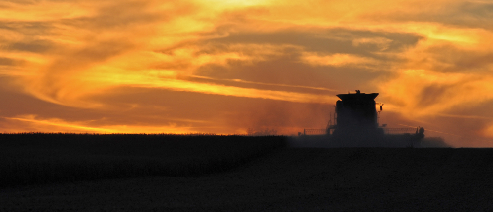Combine in field at sunset